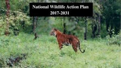 wildlife action plan