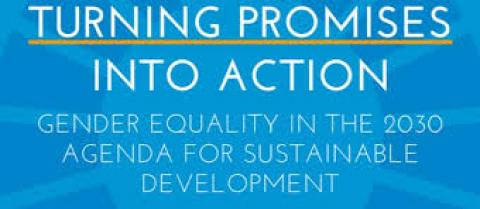 Turning Promises in to action : Gender equality in 2030 agenda' report